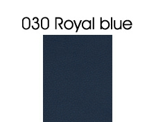 030 Royal Blue Vinyl